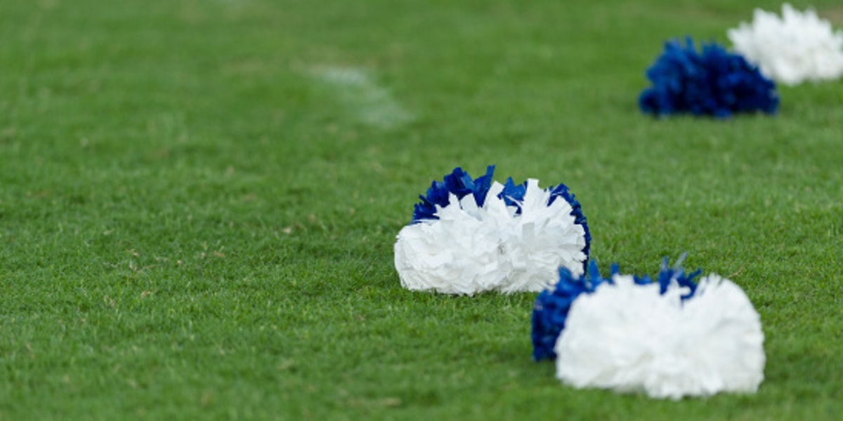 Pom poms on grass field