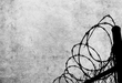 Grunge background with barbed wire fence