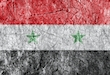 Grudge stone painted Syria flag