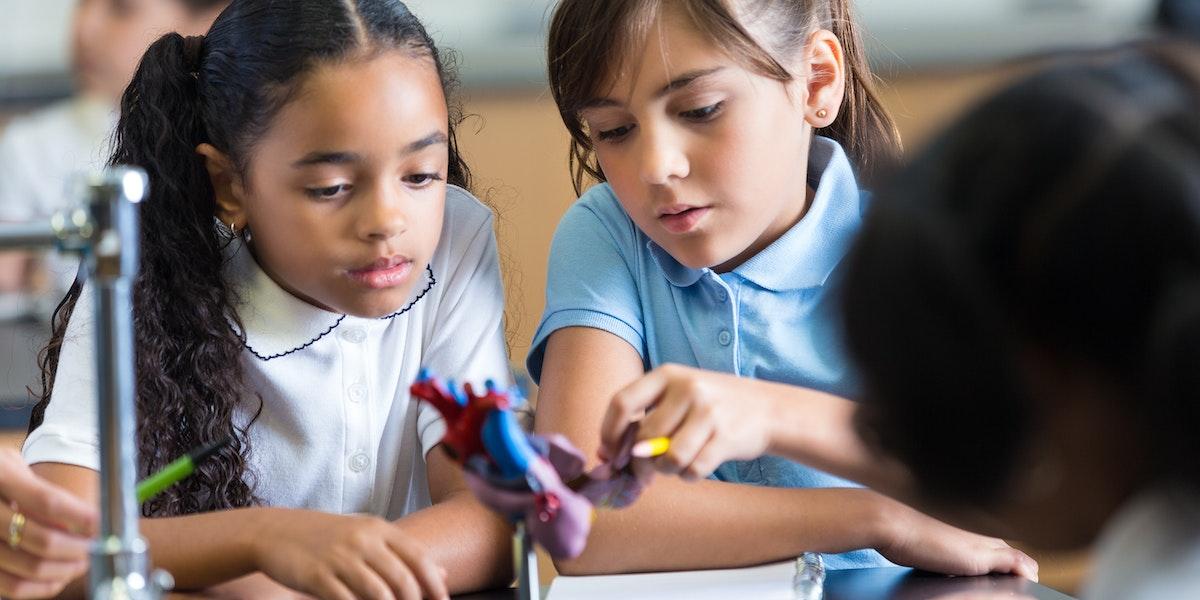 Elementary school girls studying heart model in science class