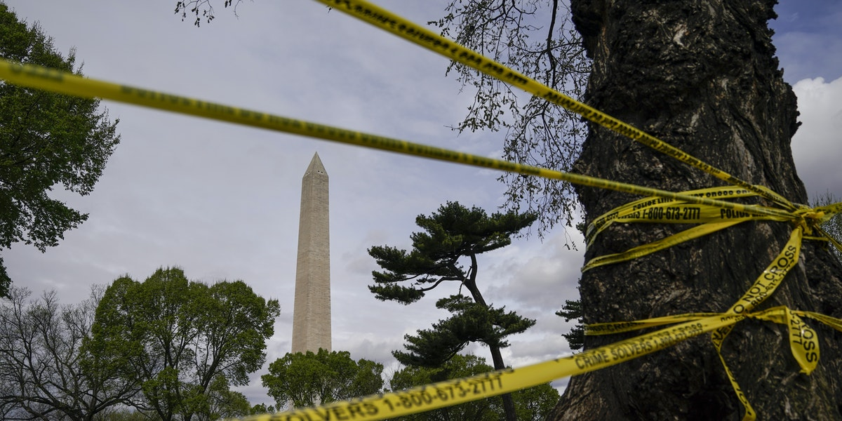 WASHINGTON, DC - MARCH 31: Roads surrounding the Tidal Basin and National Mall are closed to all traffic due to concerns with the spread of the coronavirus on March 31, 2020 in Washington, DC. To prevent the spread of COVID-19, Virginia, Maryland and the District of Columbia have all announced stay-at-home orders this week, which strongly discourage residents from leaving home unless absolutely necessary or essential. (Photo by Drew Angerer/Getty Images)